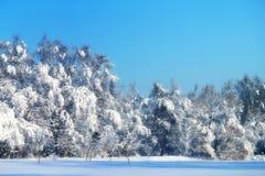 Paesaggio della foto di inverno Fotografie Stock