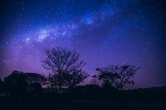 Paesaggio della galassia con luce rosa e blu immagine stock libera da diritti