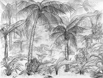 Paesaggio della giungla Immagine Stock