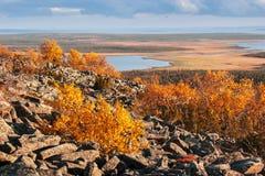 Paesaggio della Lapponia con la montagna rocciosa e gli alberi variopinti in autunno Fotografia Stock