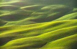 Paesaggio della molla, campo e struttura astratti delle piste La Toscana,  fotografia stock