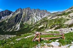 Paesaggio della montagna. Immagine Stock Libera da Diritti