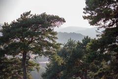 Paesaggio della montagna, fotografie stock