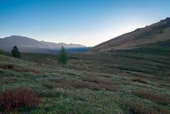 Paesaggio della montagna altai Immagini Stock Libere da Diritti