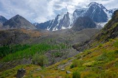 Paesaggio della montagna altai Immagine Stock Libera da Diritti