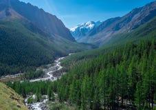 Paesaggio della montagna altai Immagini Stock
