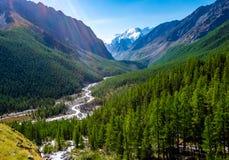 Paesaggio della montagna altai Immagine Stock