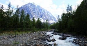 Paesaggio della montagna Altai, Siberia Immagine Stock