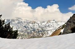 Paesaggio della montagna in Austria Immagini Stock