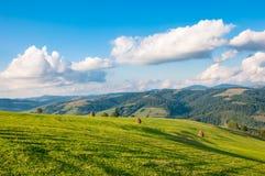 Paesaggio della montagna carpatica con il cielo nuvoloso blu nel giorno di estate Fotografia Stock Libera da Diritti