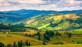Paesaggio della montagna carpatica di panorama con il cielo nuvoloso blu di estate Immagine Stock