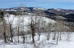 Paesaggio della montagna in Colorado Rocky Mountains immagine stock libera da diritti
