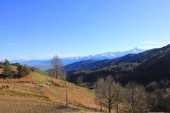 Paesaggio della montagna con gli alberi e la vegetazione Immagini Stock