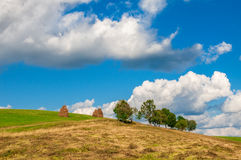 Paesaggio della montagna con i mucchi di fieno e gli alberi sopra la collina Fotografie Stock Libere da Diritti