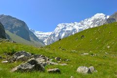 Paesaggio della montagna con il campo verde Fotografie Stock