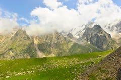 Paesaggio della montagna con il campo verde Immagini Stock Libere da Diritti