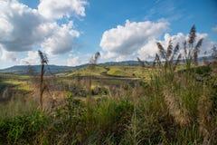 Paesaggio della montagna con il cielo della nuvola Fotografia Stock