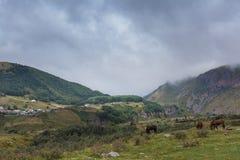 Paesaggio della montagna con il pascolo dei cavalli Fotografia Stock Libera da Diritti