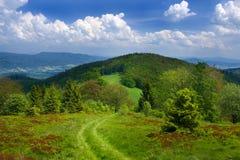 Paesaggio della montagna con il percorso Immagini Stock