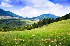 Paesaggio della montagna con il prato Fotografia Stock
