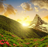 Paesaggio della montagna con il supporto il Cervino nel tramonto Fotografie Stock