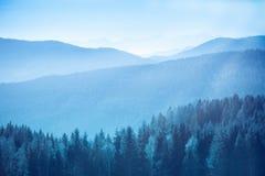 Paesaggio della montagna con l'abete rosso e pini nelle alpi austriache durante il giorno soleggiato luminoso calmo con i raggi l Fotografie Stock