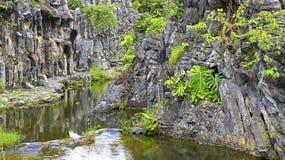 Paesaggio della montagna con la corrente Fotografie Stock