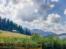 Paesaggio della montagna con la costruzione dei fiori, del hayfield e della famiglia immagini stock libere da diritti