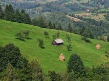 Paesaggio della montagna con la foresta variopinta e la casa tradizionale Immagini Stock Libere da Diritti