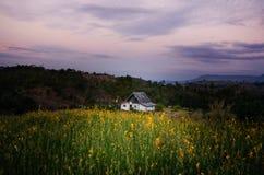 Paesaggio della montagna con le case ed il fiore del campo Fotografia Stock