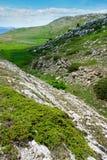 Paesaggio della montagna con le piante verdi Immagini Stock