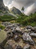 Paesaggio della montagna con un'insenatura Fotografie Stock Libere da Diritti
