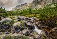 Paesaggio della montagna con un'insenatura Fotografie Stock