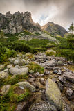 Paesaggio della montagna con un'insenatura Fotografia Stock Libera da Diritti