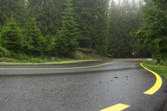 Paesaggio della montagna con una strada nella priorità alta e pini ed abeti nei precedenti, con le linee gialle Fotografia Stock Libera da Diritti
