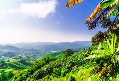 Paesaggio della montagna da Chiang Rai - la Tailandia fotografie stock