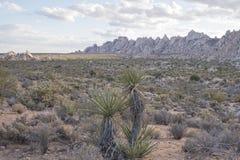 Paesaggio della montagna del deserto Immagini Stock Libere da Diritti