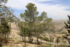 Paesaggio della montagna del deserto (vista aerea), Giordania, Medio Oriente Immagini Stock Libere da Diritti