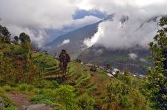 Paesaggio della montagna del giacimento del riso di verde di Tellus es di agricoltura nel Nepal Villaggio Landruk Immagine Stock Libera da Diritti