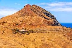 Paesaggio della montagna del Madera - ranch in deserto con le palme Fotografie Stock