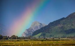 Paesaggio della montagna dell'arcobaleno Immagini Stock