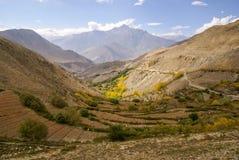 Paesaggio della montagna dell'azienda agricola Fotografia Stock Libera da Diritti
