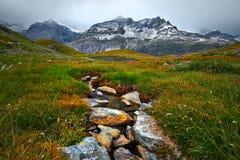 Paesaggio della montagna della corrente dell'acqua Fotografie Stock