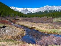 Paesaggio della montagna della sorgente Fotografie Stock