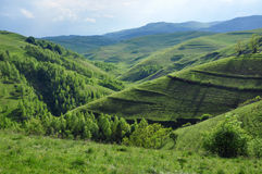 Paesaggio della montagna della sorgente Immagini Stock