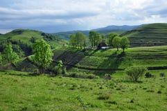 Paesaggio della montagna della sorgente Fotografia Stock