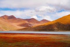 Paesaggio della montagna della strada nell'azionamento di turismo del xizang Fotografia Stock