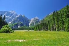 Paesaggio della montagna delle alpi. Friuli, Italia Fotografia Stock Libera da Diritti