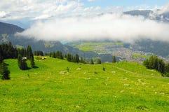Paesaggio della montagna delle alpi svizzere Fotografia Stock
