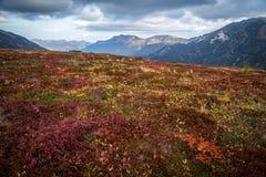 Paesaggio della montagna di autunno immagine stock libera da diritti